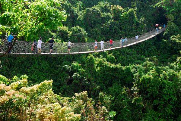 三亚热带天堂森林公园图片